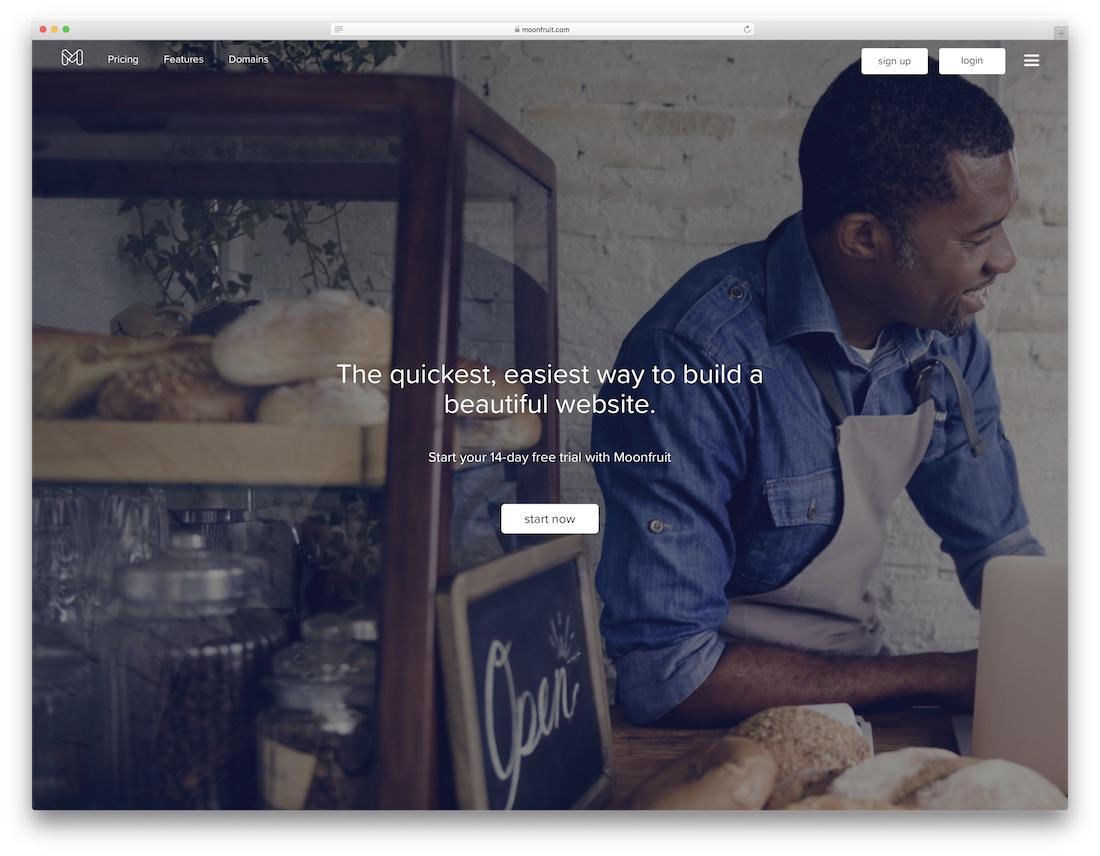 Moonfruit meilleur constructeur de site Web pour les artistes
