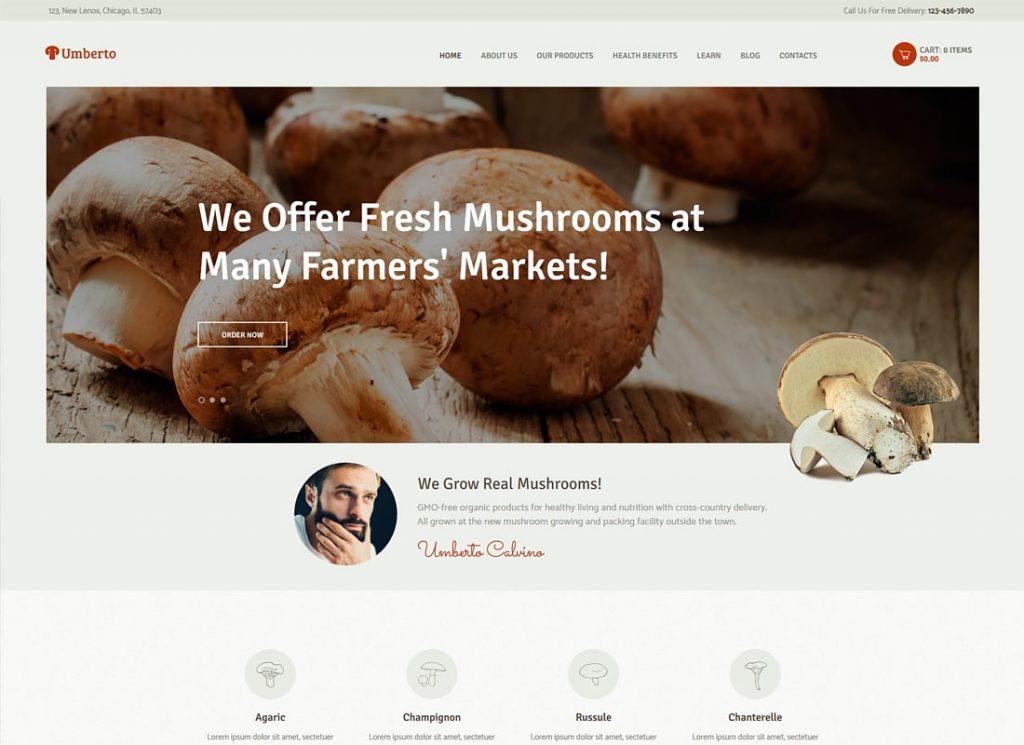 umberto-champignon-ferme-magasin-de-produits-biologiques-wp-theme3022-min