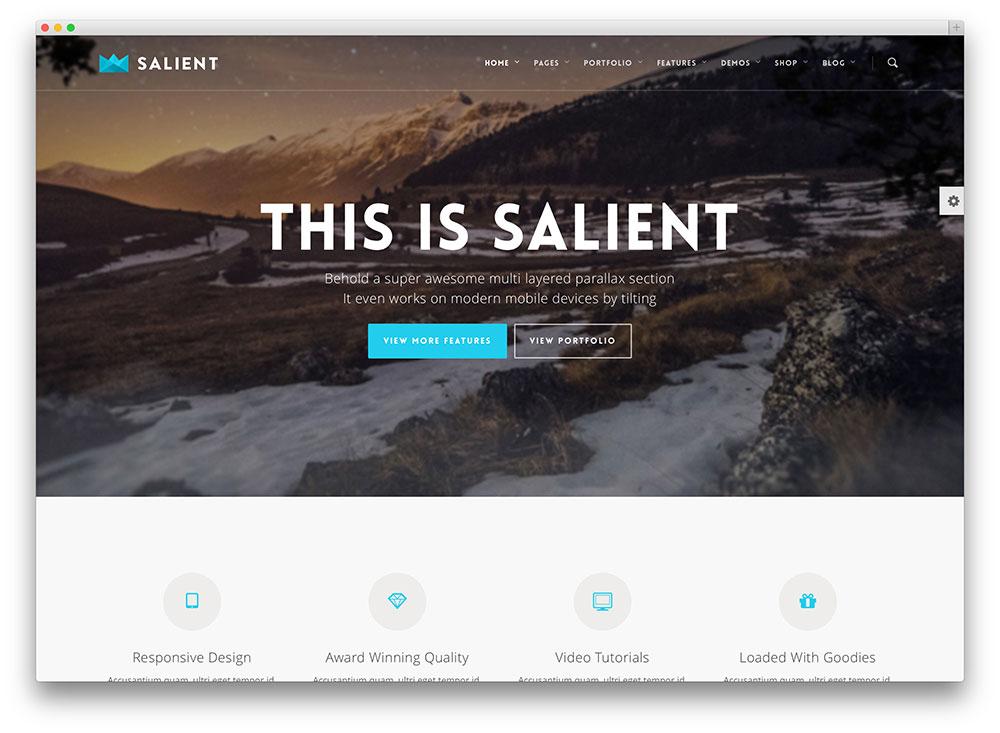 salient flat design wordpress theme