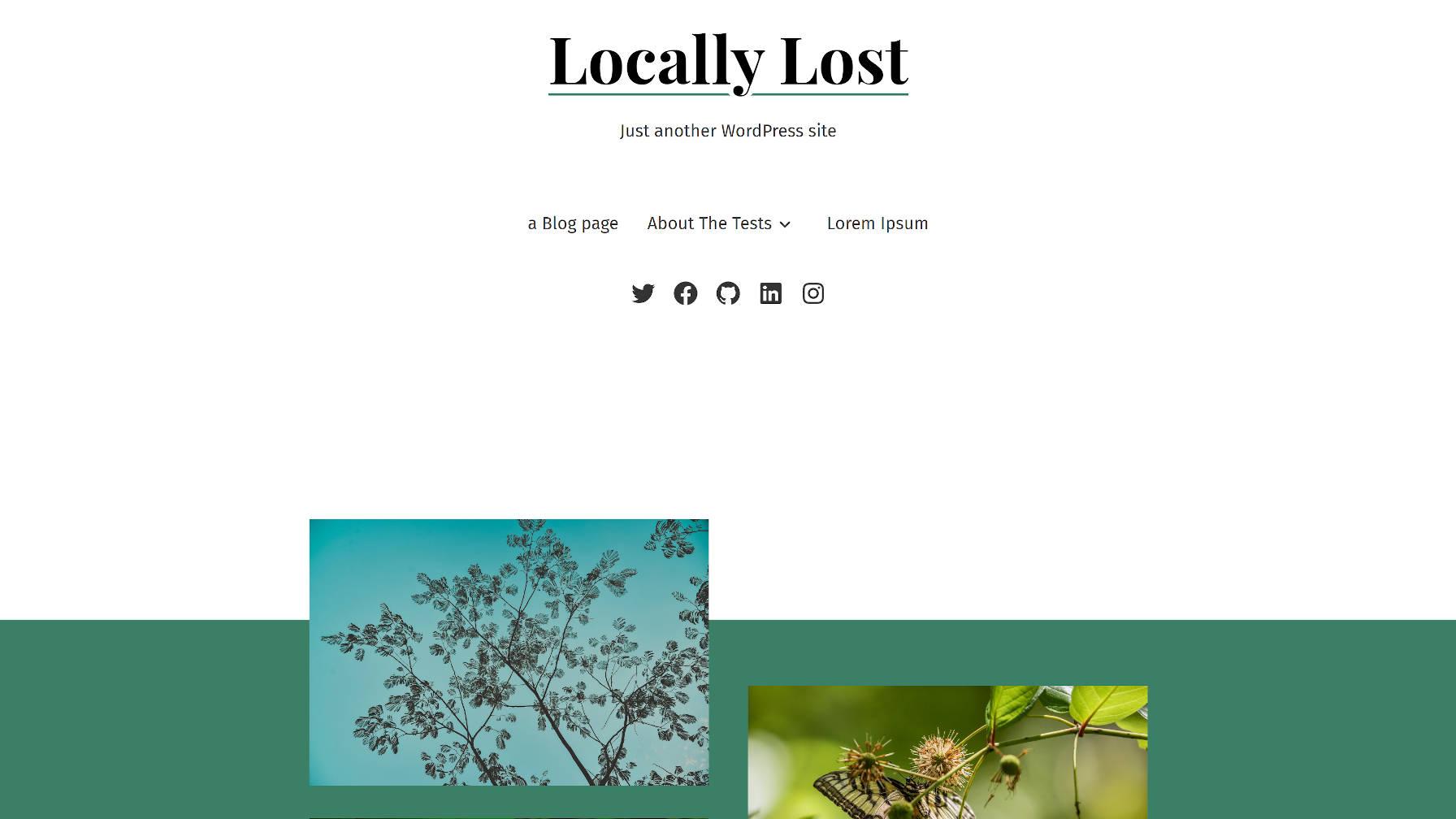 Vue de la page d'accueil du thème WordPress Seedlet.