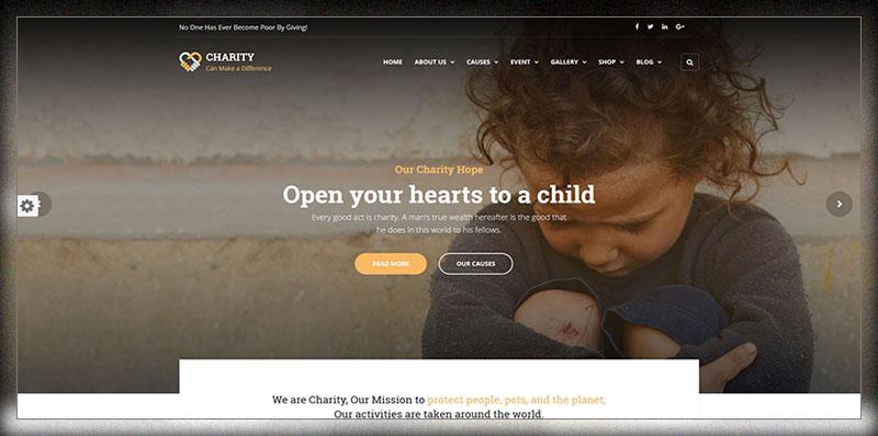 Charité - Thème WordPress à but non lucratif / caritatif / de collecte de fonds
