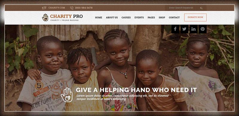 Charity Pro: Thème WordPress de charité et de collecte de fonds