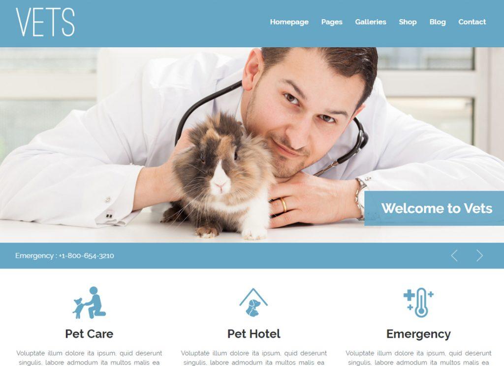 VETS |  Thème WordPress pour clinique médicale vétérinaire
