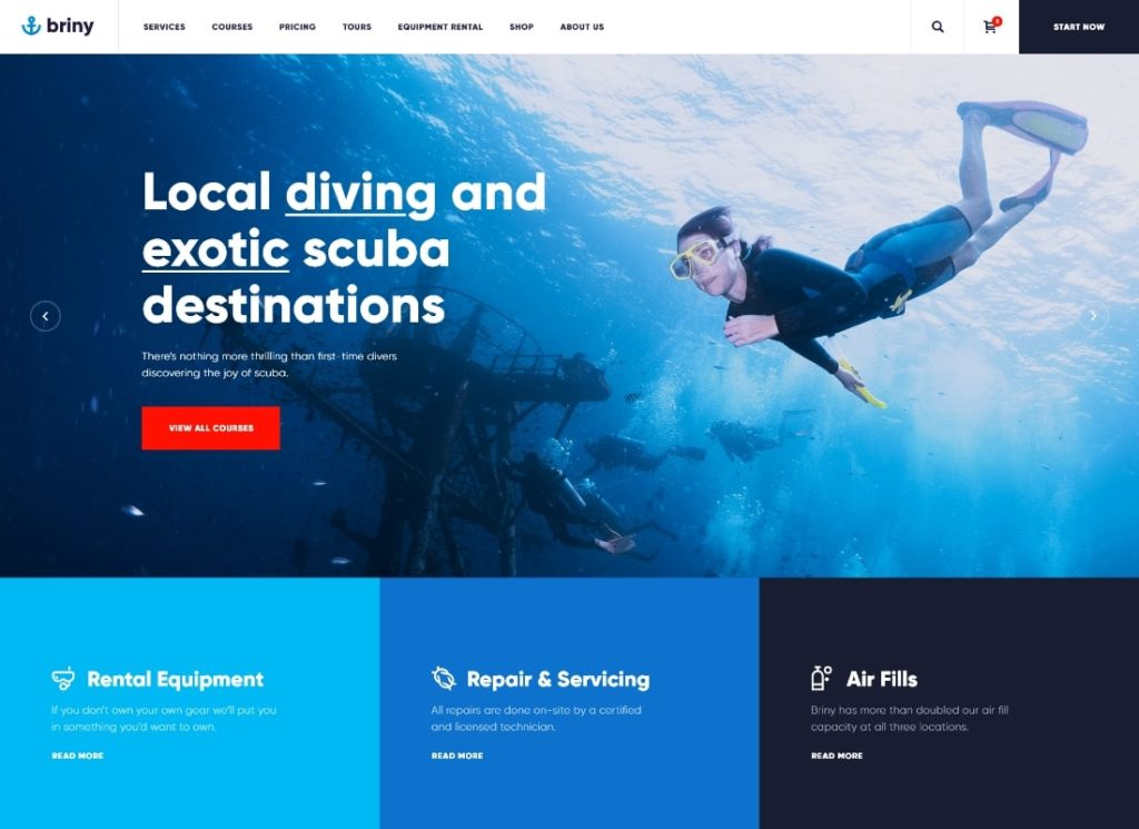 Briny |  Thème WordPress pour école de plongée et sports nautiques