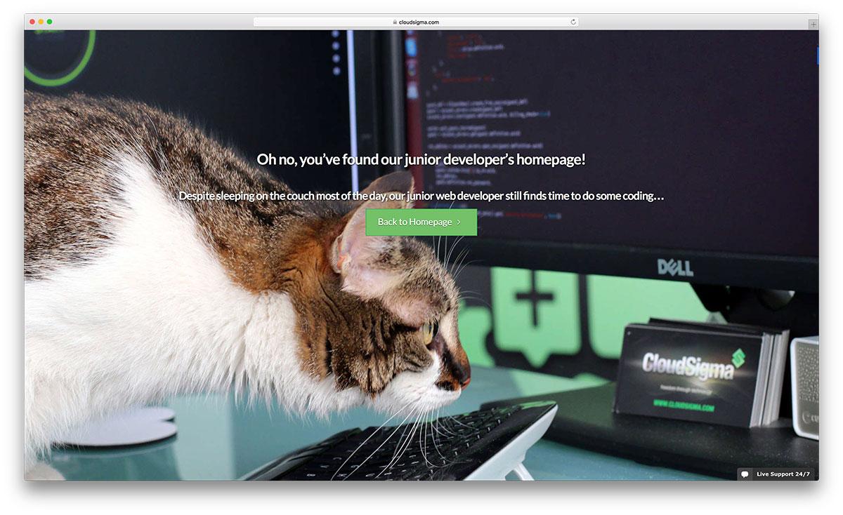 Cloudsigma-404-exemple-de-page-d'erreur-drôle
