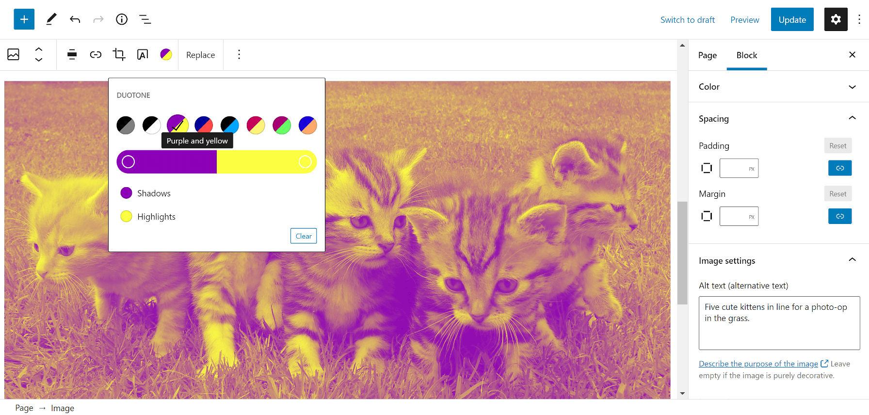 Ajout d'un filtre bicolore violet et jaune au-dessus d'une image de chatons dans un champ d'herbe.