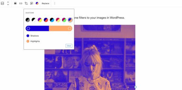 WordPress 5.8 : ajouter un filtre bicolore à votre image