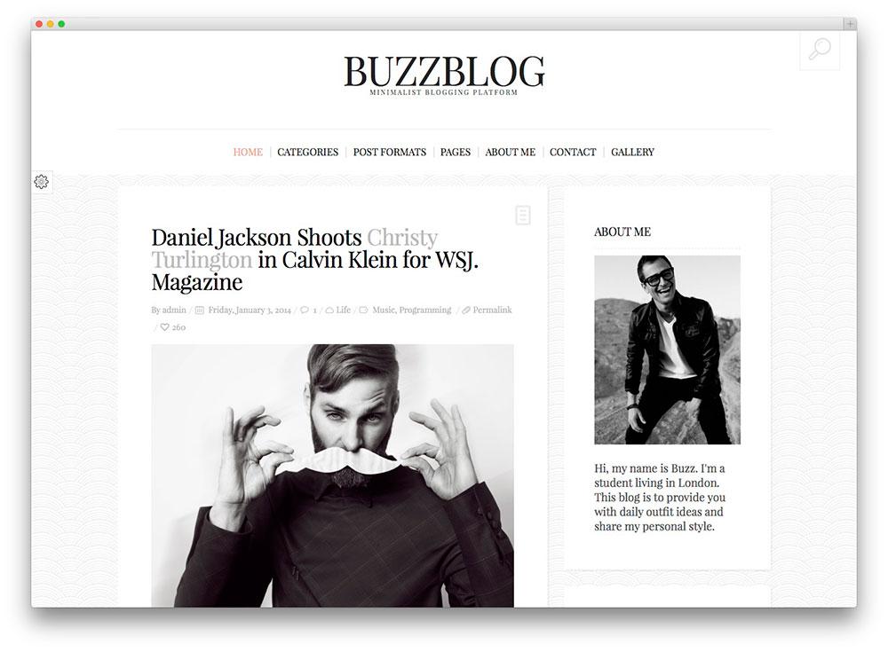 thème buzzblog WP