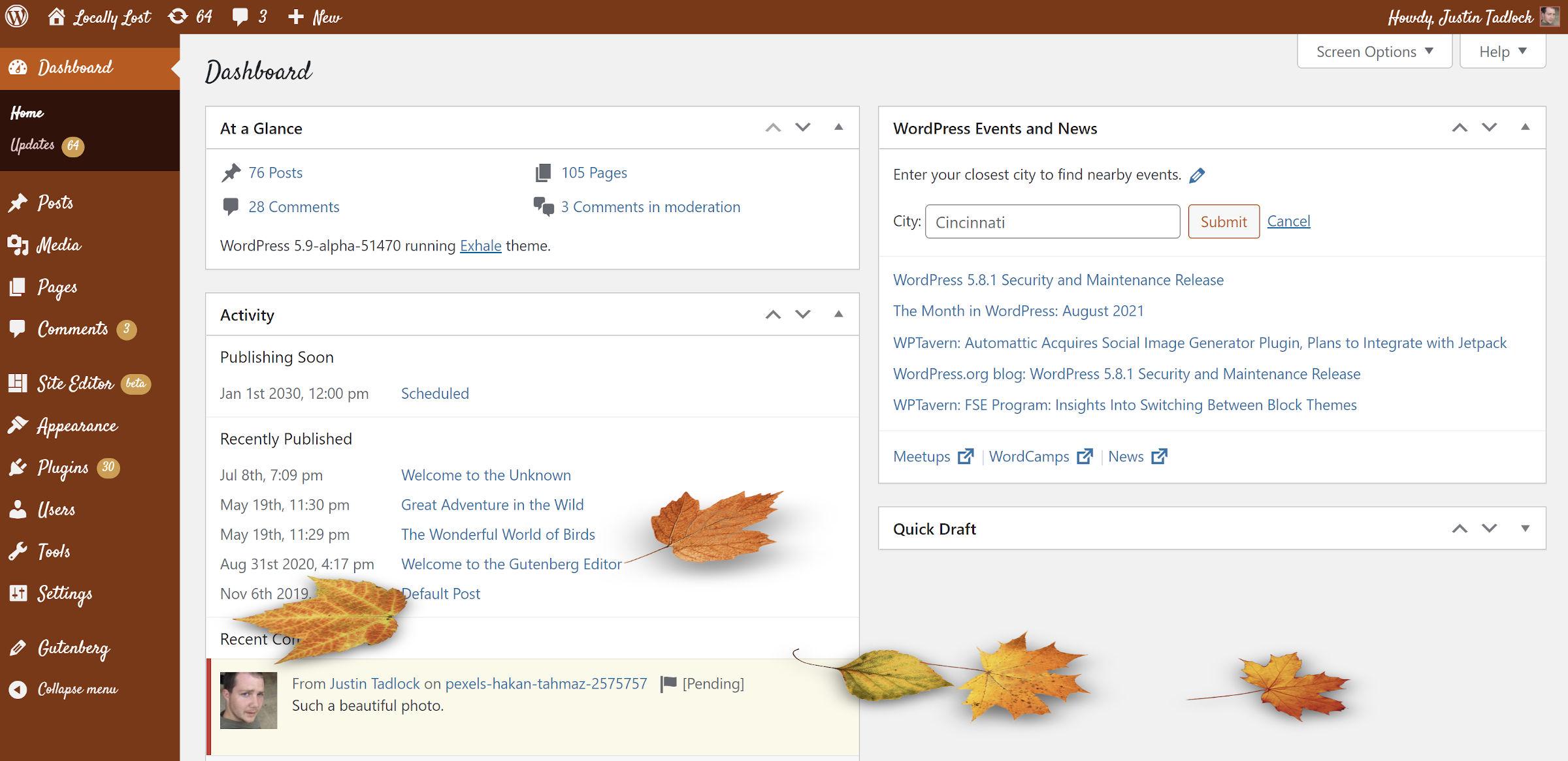 Schéma de couleurs de l'écran du tableau de bord WordPress lors de l'utilisation d'une palette inspirée de la citrouille.