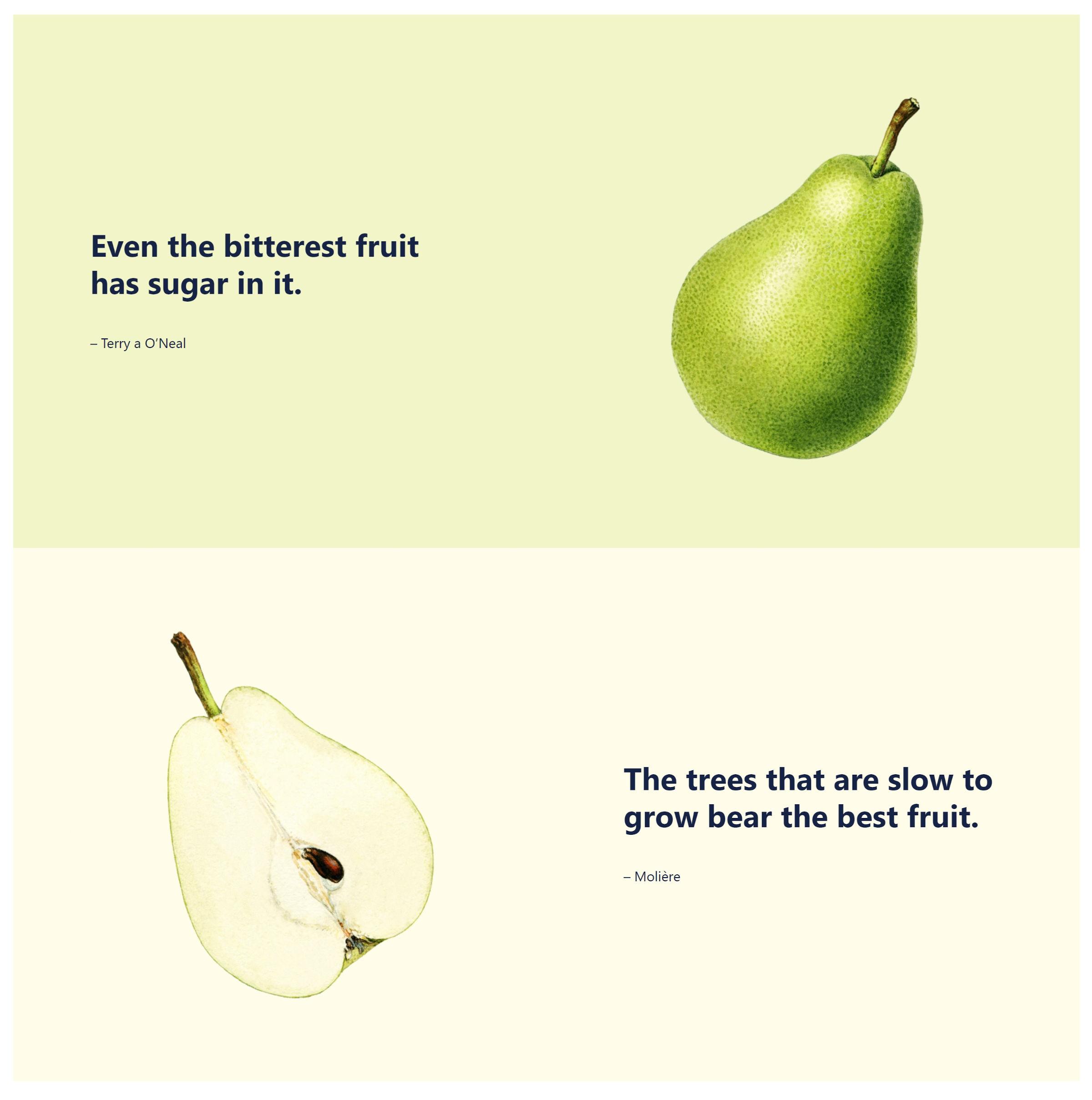 Deux sections, chacune avec un fruit et une citation.